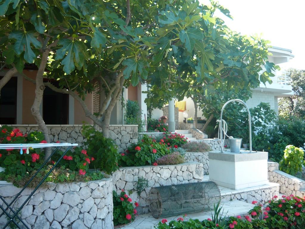 Ferienwohnung Ferienwohnungen Nikola, Apartman A4+1 (940240), Kanica, , Dalmatien, Kroatien, Bild 9